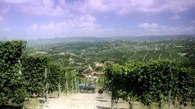 Piamonte, langhe, viñedos metrajes