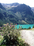 Pian palú. Turquoise dam in Italy mountains Stock Images