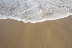 Piana od oceanu na plaży Obraz Royalty Free