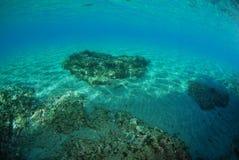Pianeta dell'oceano Fotografie Stock Libere da Diritti