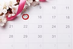 Pianificazione del calendario di gravidanza che prova ad avere bambino immagine stock libera da diritti