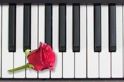 Pianino klucze i czerwieni róża, romantyczna muzyka Fotografia Stock