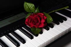 Pianino klucze i róża kwiat zdjęcia stock