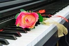 Pianino & wzrastał Obrazy Stock