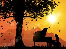 A Pianist, Uner The Tree, Sunset stock photos