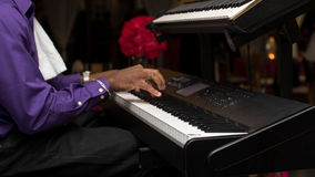 Pianista con el instrumento musical clásico del piano de cola fotos de archivo libres de regalías