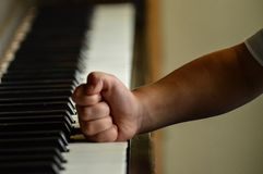 Pianista louco Imagens de Stock