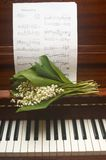 PIANO. A bunch of lily of the valay on the piano Royalty Free Stock Photos