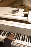 Piano. Grand white piano with sunglasses resting on top and musicians hand playing on the keys Stock Image