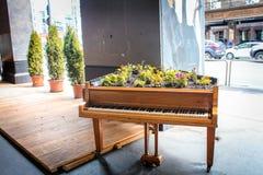 piano Royaltyfri Fotografi