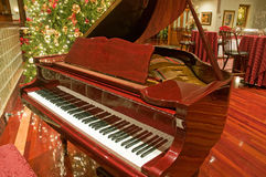 Piano. A view of a beautiful, shiny baby grand piano next to a tall Christmas tree at a holiday party or reception area Stock Photography