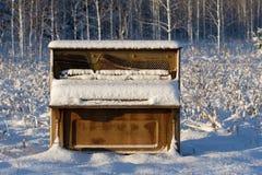 Piano abandonado en campo del invierno Fotos de archivo libres de regalías