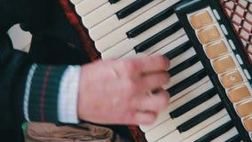 Piano Accordion Musician stock video