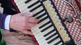 Piano Accordion Musician stock video footage