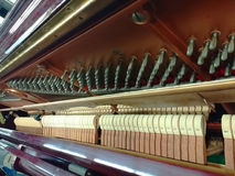 Piano action Royalty Free Stock Photo