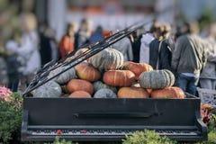 Piano con una tapa abierta llena de calabazas reales orgánicas Día de la acción de gracias y decoración festiva y concepto de Hal Imagenes de archivo