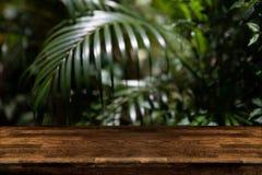 Piano d'appoggio di legno scuro con sfuocatura sulle foglie di palma verdi o albero in TR fotografia stock