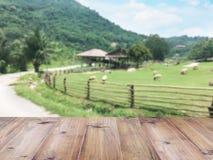 Piano d'appoggio di legno sopra la moltitudine confusa di pecore che pascono all'azienda agricola Fotografia Stock