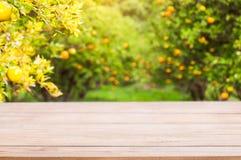 Piano d'appoggio di legno su luce solare brillante con sfuocatura del giardino arancio nella t immagini stock libere da diritti