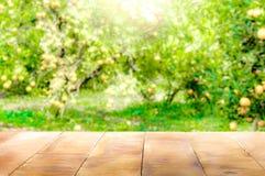 Piano d'appoggio di legno su luce solare brillante con sfuocatura del giardino arancio nella t fotografie stock libere da diritti