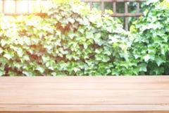 Piano d'appoggio di legno vuoto con sfuocatura sulle foglie verdi o albero con la luce del bokeh a fondo fotografie stock libere da diritti