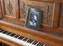 Piano - damen Sings Blues royaltyfria bilder