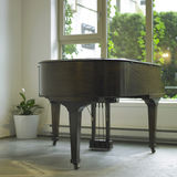 Piano de Brown Images stock