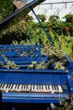 Piano de cola en el jardín foto de archivo libre de regalías