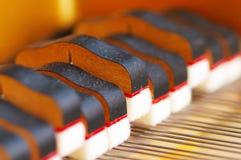 Piano de plan rapproché d'amortisseurs de piano Photos stock