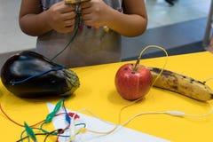 Piano della frutta con i bambini La attività connessa con l'istruzione del GAMBO permette i bambini al pla immagini stock libere da diritti
