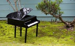 Piano do brinquedo no jardim Imagens de Stock Royalty Free