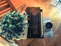 piano e pianta Fotografia Stock Libera da Diritti