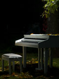 Piano et nature Image libre de droits