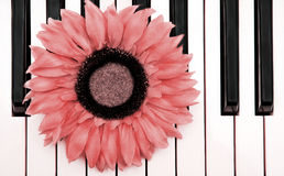 Piano Flower Royalty Free Stock Photography