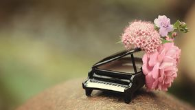 Piano flower river background hd footage nobody. Day light