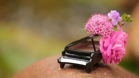 Piano flower river background hd footage nobody. Day light stock video