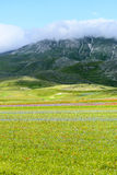 Piano Grande di Castelluccio (Italy) Stock Photo