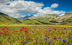 Free Piano Grande Mountain Plateau, Umbria, Italy Stock Photography - 78272142