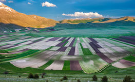 Piano Grande scenic fields and Sibillini mountains in Umbria, It Stock Photo