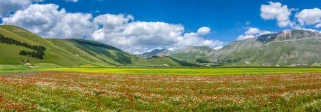 Piano Grande summer landscape, Umbria, Italy Stock Photography