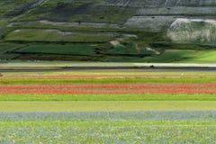 Piano Grandioso di Castelluccio (Itália) Foto de Stock