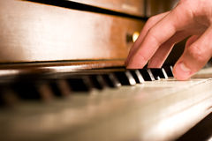 Piano Hand. A caucasian male's hand playing the piano Royalty Free Stock Photos