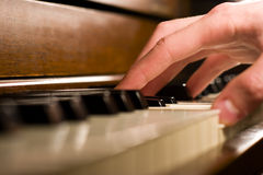 Piano Hand. A caucasian male's hand playing the piano Stock Photography