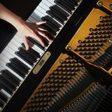 Piano hands pianist playing Stock Photography