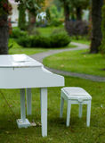 Piano in het Park Stock Foto's
