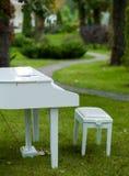 Piano in het Park Stock Foto's