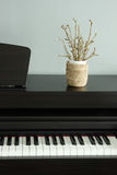 Piano and home decoration Stock Photos