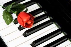 Piano Key and rose Royalty Free Stock Image