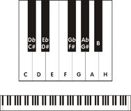 Piano. Keyboard. Vector isolated illustration of piano keyboard with notes symbol Royalty Free Stock Photo