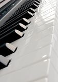 Piano keyboard. With black and white keys royalty free stock photos